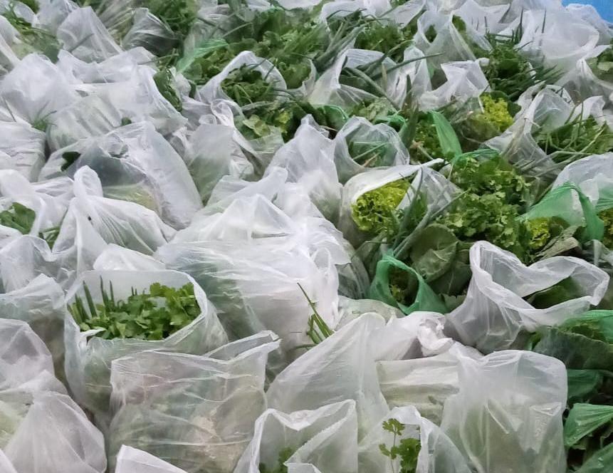 PAA: Mais de 450 famílias já foram beneficiadas com alimentos oriundos da agricultura familiar