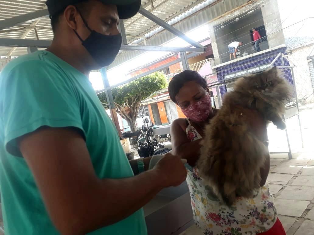 Vacinação Antirrábica: Três mil cães e 650 gatos já  foram imunizados durante a campanha em Jaguarari